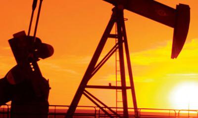Referendum estrazioni gas/petrolio in mare